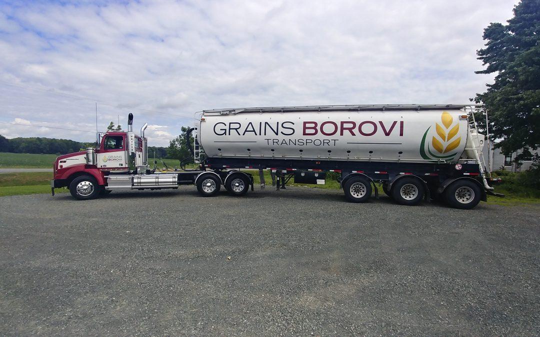 Grains Borovi